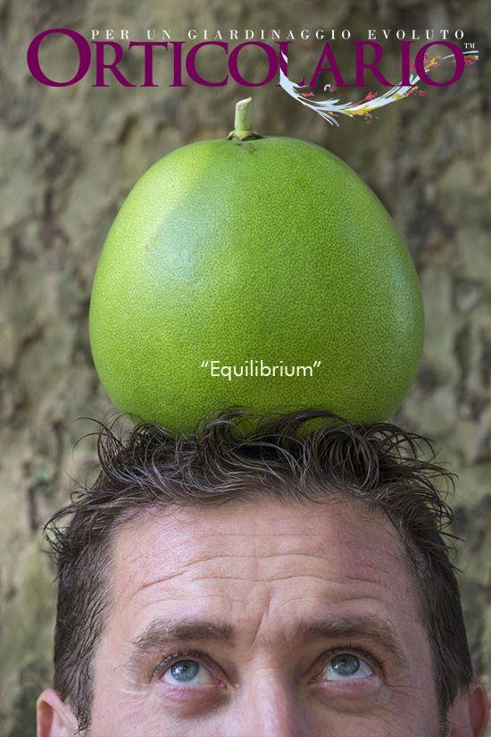 Orticolario e cinema Omaggio a 'Equilibrium'  di Kurt Wimmer, USA 2002 Foto di Dario Fusaro Garden Photography