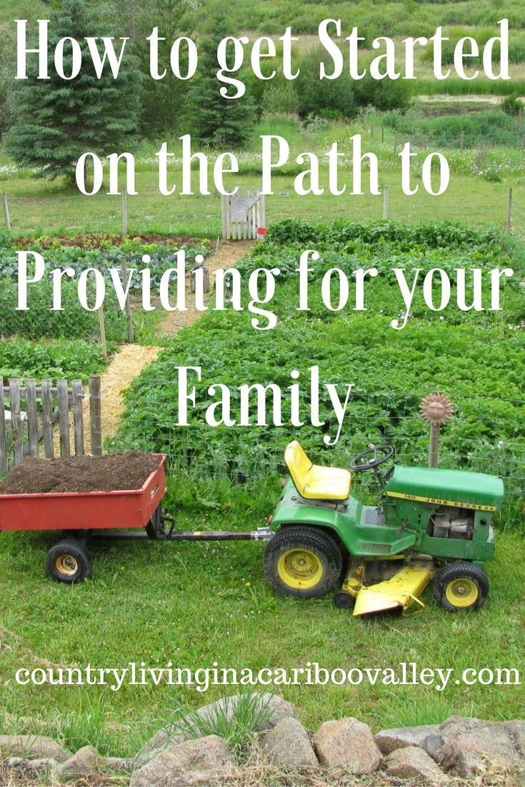 Overwhelmed on where to start? Here are some great tips on how to start your self sufficiency journey. Happy Homesteading!