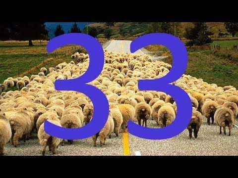 Gerçek Din 33/40 : Kelle Sayısı Sayılarak Gerçek Bulunabilir mi? - YouTube