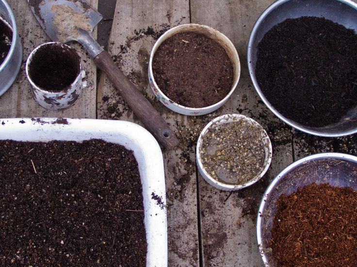 Homemade Potting Mix Ingredients: 2 parts compost 2 parts soaked fine coconut coir 2 parts worm castings 1 part cow manure 1 part coarse river sand