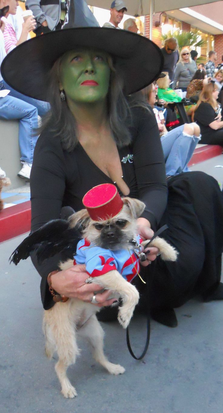 My Wizard of OZ Wicked Witch of the West Costume with