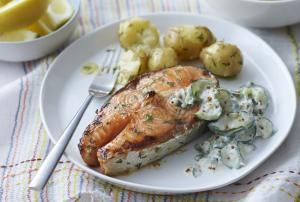 Baked Salmon Steaks with Sour Cream, Dill, and Lemon Zest: Salmon Steaks With Dill