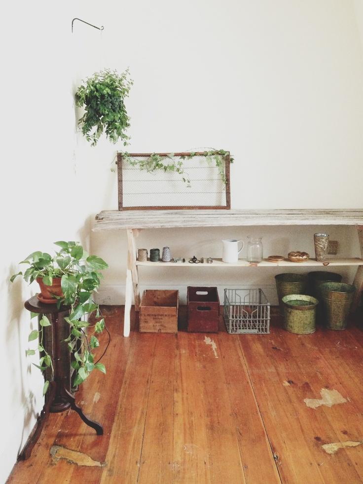 wild folk studio