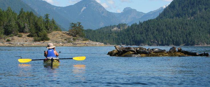 We love finding hidden gems. Desolation Sound, British Columbia. #DamGoodDays