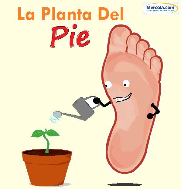 la planta del pie