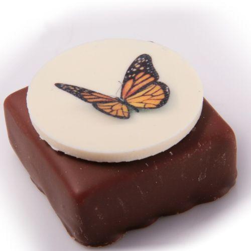 Chocolade droom  Snoep en lekkernijen acties en nieuws