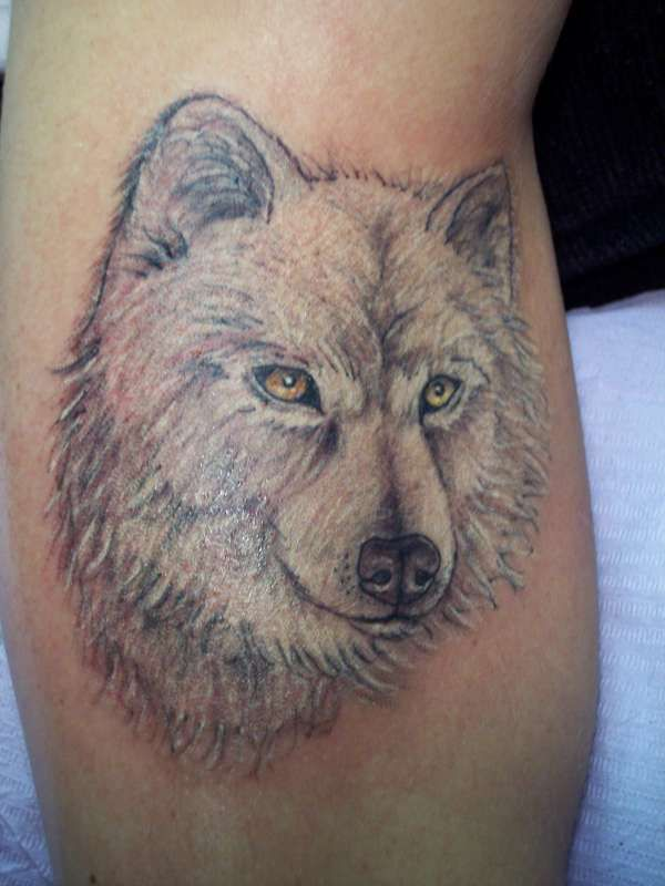 White wolf tattoo my body is my canvas pinterest for Red wolf tattoo