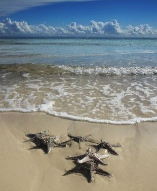 Moreton-Island-Australia
