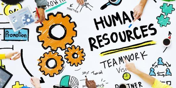 برنامج ادارة شؤون الموظفين افضل برنامج لادراة شؤون العاملين والموارد البشرية Becreative Hr Management Creative Resources