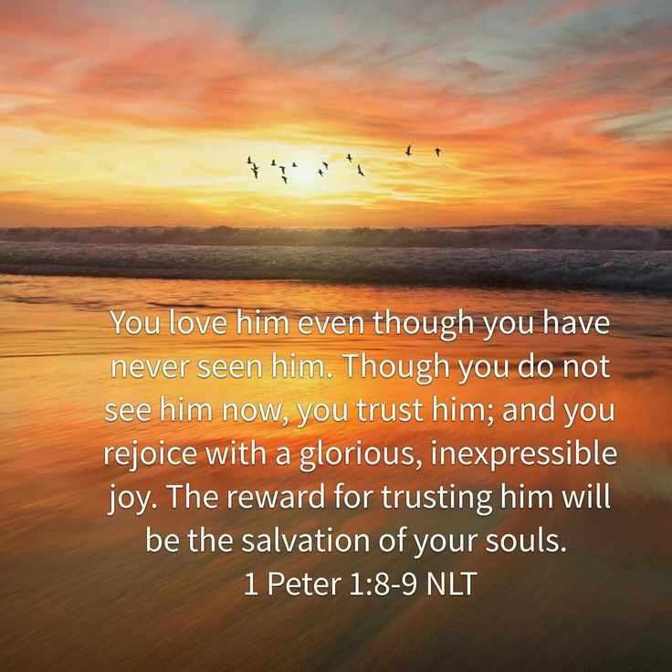 1 Peter 1:8-9 NLT...This was the verse of the day Nov 10, 2016!