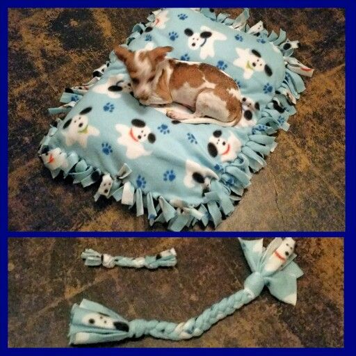 Dog bed and toys with my old pillow in it so it smells like me for my new puppy. Super easy diy no sew with fleece. & 21 best No sew doggie bed images on Pinterest   Doggie beds No ... pillowsntoast.com