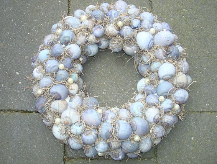 mooie blauwe #schelpen http://www.pompoenzaden-decoshop.nl/