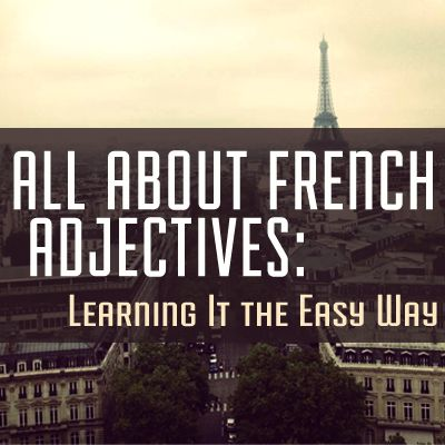 ALL ABOUT FRENCH ADJECTIVES #french #language #grammar