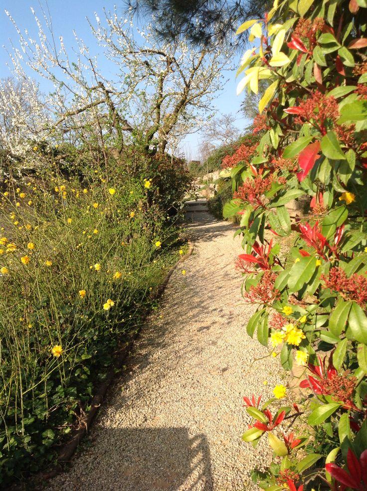 A Firenze si respira aria di primavera :) Giardino giapponese, un piccolo pezzo del Sol Levante in uno dei posti più suggestivi di Firenze
