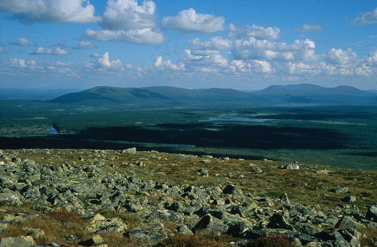 Pallas-Yllästunturi National Park is Finland's third largest National Park. The area of this park has doubled now that Pallas-Ounastunturi National Park and Ylläs-Aakenus Nature Reserve have been combined to create Pallas-Yllästunturi.