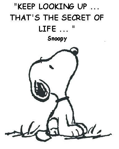 Amen Snoopy!