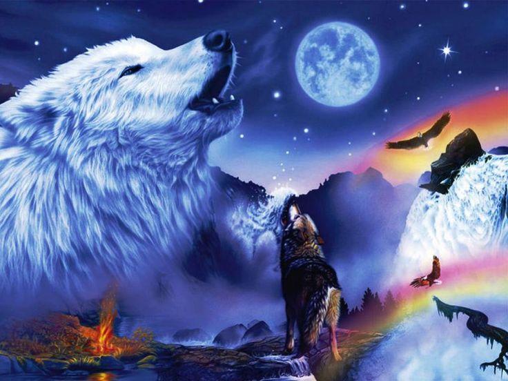 dreamcatcher native wolf spirit wallpaper - photo #17
