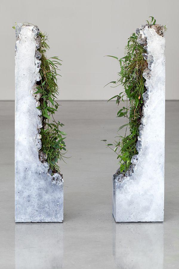 Portal II 2014 cement, marble waste, limestone, steel slag, coal ash, plastic fibre, tree fern slab, various Australian native plants and Spanish moss. Terraforms by Jamie North