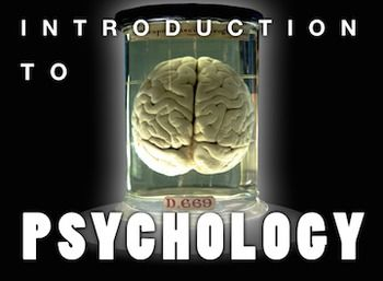 opencourseware yale psychology Mit open courseware has 29 undergraduate courses in psychology and 18 graduate courses  the department of psychology at yale conducts research in major areas of.