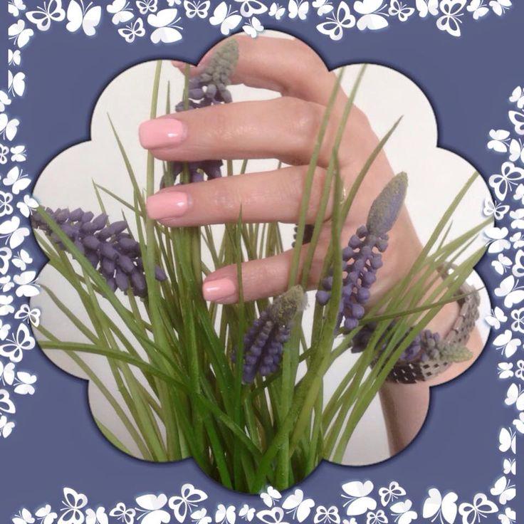 """Met deze """"sweet pink"""" gellak zijn je nagels klaar voor de lente.   ~ 3 á 4 weken prachtig gelakte nagels.  ~ versterkt je eigen nagel.  ~ nagelmodellen gezocht voor gellak. Ik vraag een kleine vergoeding van €. 5,00 ivm de kosten van de materialen.   ~ aanmelden via SabrieneImmers@hotmail.com"""