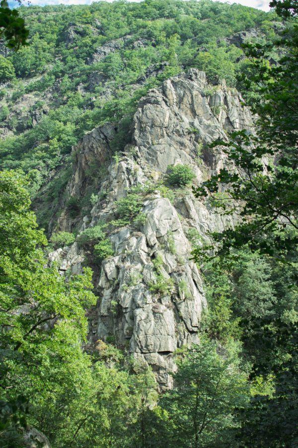 Wandern im Harz   http://travelandlipsticks.de/index.php/de/26-heimat/203-wandern-harz   #germany #harz #travel