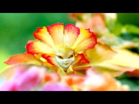Elfos Reales | En Busca de la Magia #4 | Documental Inédito | Naturnia - YouTube