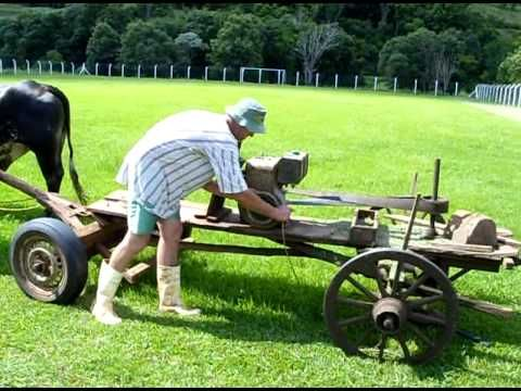 Who Needs a Lawnmower When You've Got... a Cow Powered Lawnmower?