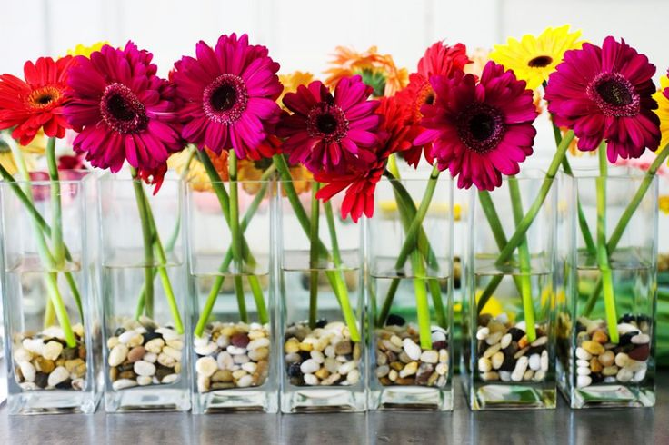 38 Awesome gerber daisy wedding centerpieces images