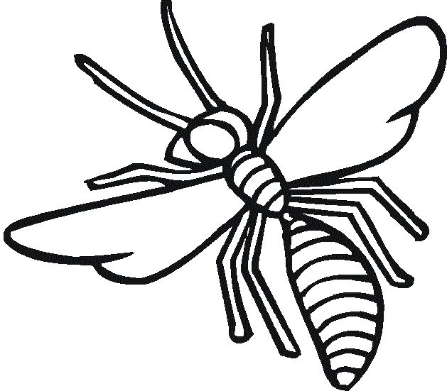 Flying Insects Coloring Pencil Coloring Coloring Pages