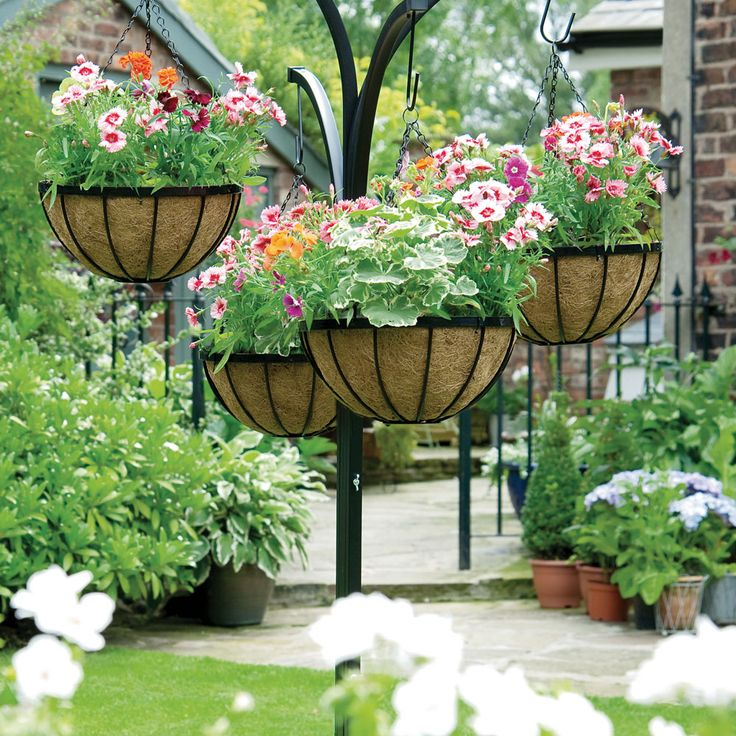 17 Best images about For My Garden