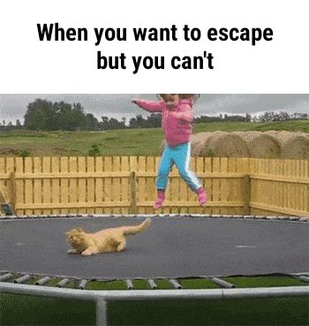 When you want to escape funny pics, funny gifs, funny videos, funny memes, funny jokes. LOL Pics app is for iOS, Android, iPhone, iPod, iPad, Tablet