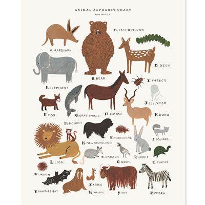 Rifle Paper Co Print - Animal Alphabet   Pony Lane
