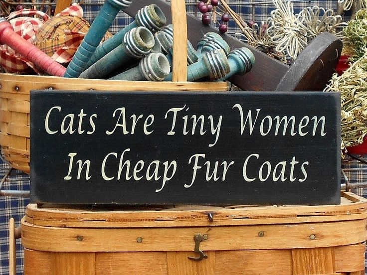 "Cats Are Tiny Women In Cheap Fur Coats painted wood sign 4.5"" x 12"" choice of color"
