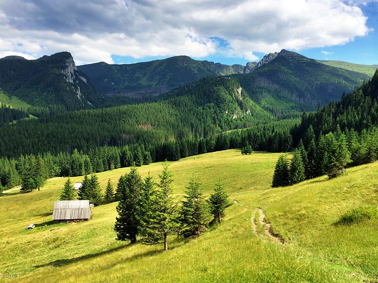Kalatówki - widok na Tatry  Kalatówki - views of the Tatra mountains.