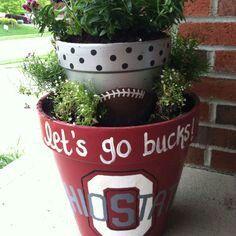 Ohio state buckeyes flower pots
