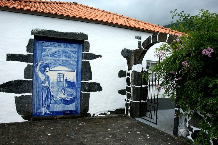 Velas Sao Jorge Azores - Bing Images