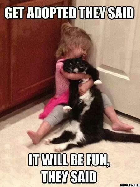 "Every time I see this, I think of my now grown niece and the poor cat who put up with all of her ""love"" lol"
