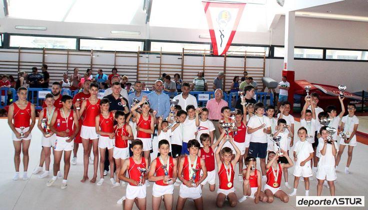 campeonato de asturias de gimnasia artistica 2015  114