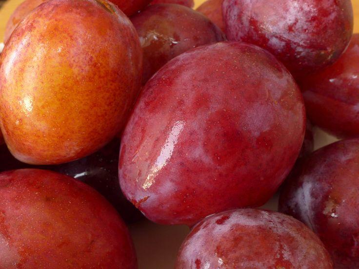 La prune d'ente, c'est la prune de chez moi, celle qui, une fois séchée, se transforme en pruneau d'Agen. Mais elle aussi délicieuse fraîche ou cuite, gorgée de soleil. C'est pour moi le goût des s...