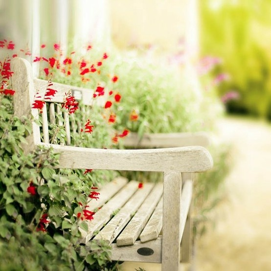 DreamingWooden Benches, Red Flower, Gardens Design Ideas, Garden Benches, Modern Gardens Design, Summer Romances, Flower Gardens, Interiors Gardens, Gardens Benches