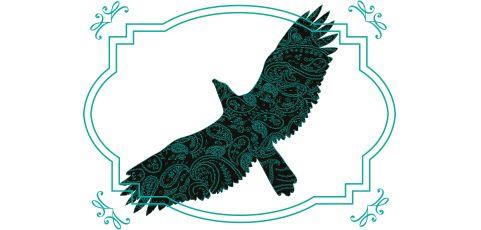 Ako sa povie po anglicky: voľný ako vták? Zisti viac o anglických frázach tu.