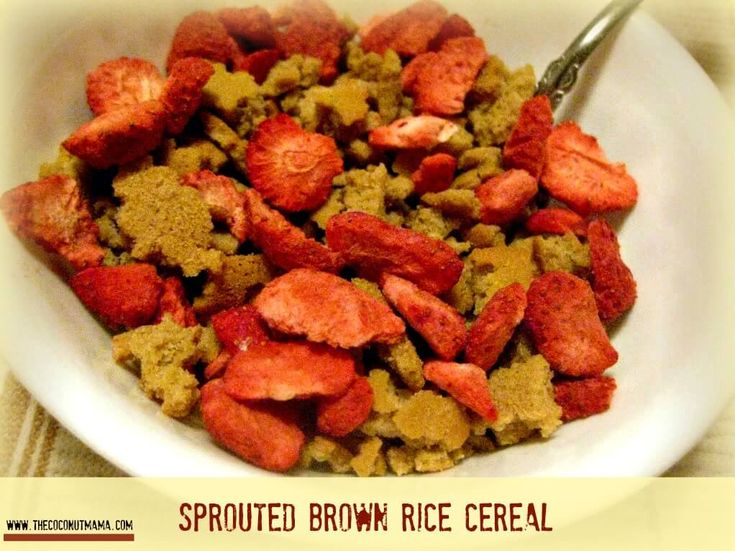 Homemade gluten free cereal made with sprouted quinoa flour.