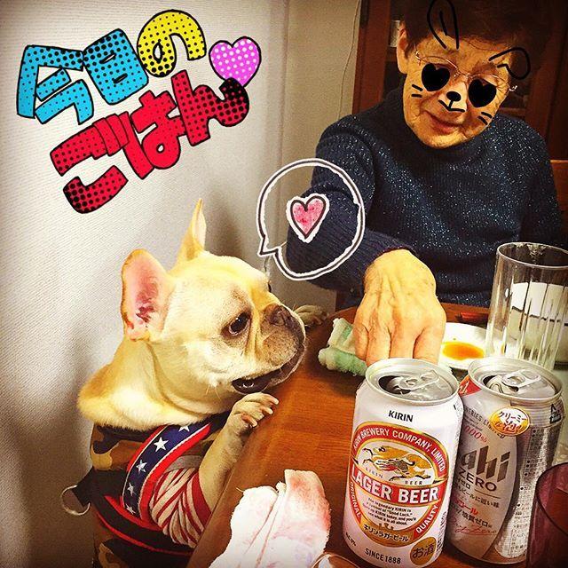 ・ ムクにとってはひいおばあちゃん👵 ・ ・ いっぱい可愛がってもらってムクはご満悦❤️テンション上がりすぎておばあちゃんを押し倒すという💦💦 ・ ・ おばあちゃんはというと…ムクを見て、面白い犬だねぇと😅笑 ・ でも、おばあちゃんもムクも楽しそうでよかった🎵☺️ ・ ・ ・ #フレンチブルドッグ #フレンチブルドッグクリーム #フレブル#鼻ぺちゃ#ぶさかわ#ブヒ#愛犬#ムク#ひいおばあちゃん #新年会#うまそう #俺にもくれ  #frenchbulldog #frenchie #frenchiegram #buhi #buhigram #dog #dogstagram #instadog #animal#grandmother #grandma #party