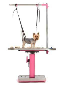 Homemade Dog Grooming Table | Dog Grooming Basics - All You Need To Keep Your Dog In Tip Top Shape
