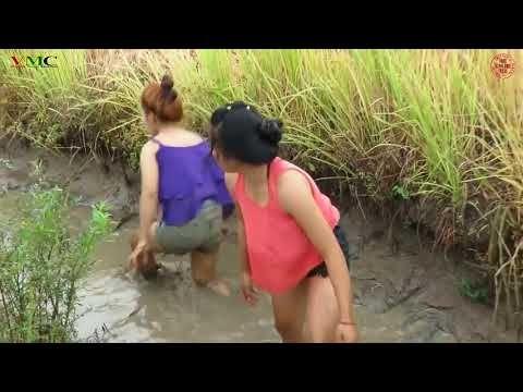 Cô gái xinh đẹp đi bắt cá - Cuộc sống quê tôi P11 || Variety Music Channel