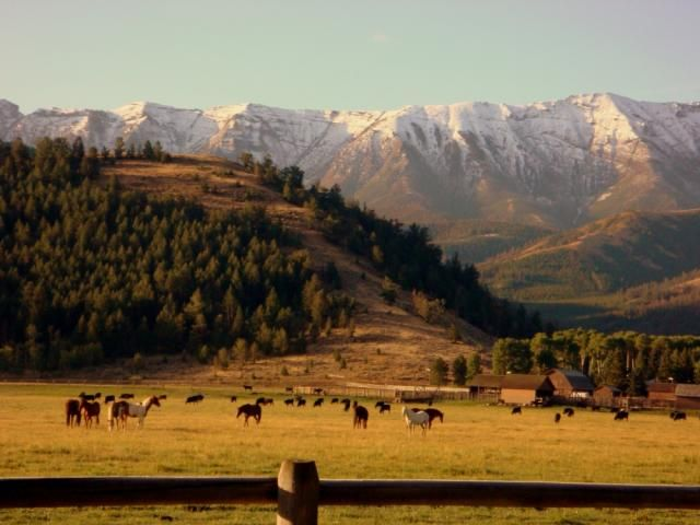 Envisioning Shelby's Sunshine Ranch near Cody, Wyoming