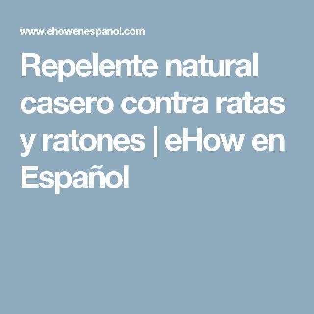 Repelente natural casero contra ratas y ratones | eHow en Español