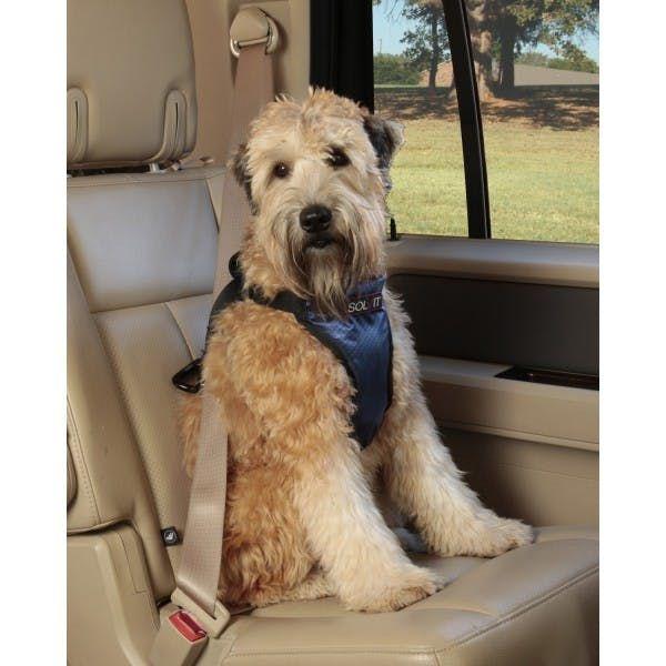 La tecnología más avanzada en protección vial para perros además de una gran comodidad. El Arnés de Seguridad Para Auto Solvit Deluxe ofrece un suave, seguro y confortable viaje por carretera para ti y tu peludo.Este Arn http://krro.com.mx/