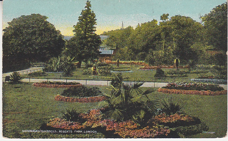 G D & D Postcard - Botanical Gardens, Regents Park, London - Star Series | PC01287