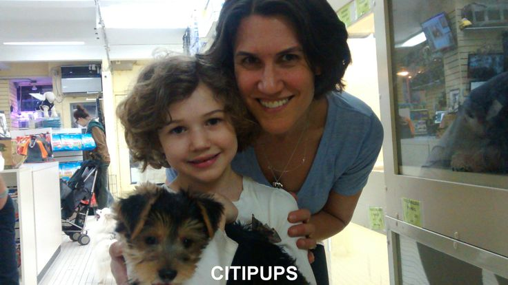 Pin by CITIPUPS NYC on Citipups Chelsea and West Village